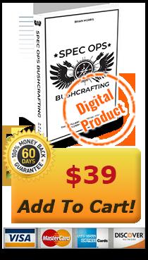 add-to-cart digital item
